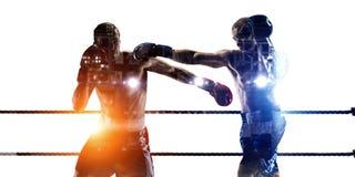 Концепция спорта бокса Мультимедиа Стоковые Фото