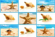 Концепция с seashells, комплект курорта Стоковое Изображение