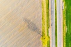 Концепция тени дерева Засушливый сезон на сельскохозяйственных угодьях Ландшафт старой дороги воздушный стоковые фотографии rf