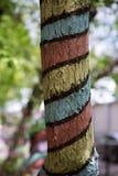 Концепция думая из стволов дерева покрашенных коробкой Стоковые Фото