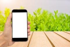 Концепция умного телефона ходя по магазинам онлайн Стоковые Изображения RF