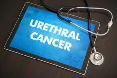 Концепция уретрального диагноза рака (типа рака) медицинская на таблице Стоковые Фотографии RF