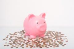 Концепция финансов сбережений денег копилки белизна банка предпосылки piggy Стоковые Изображения