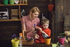 Концепция цветка Мать и маленький сын засаживают цветок в баке smellcomp магазина иллюстрации цветка Каждый цветок душа blossomin стоковые изображения rf