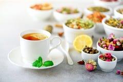 Концепция чая с космосом экземпляра Различные виды сухого чая в белых керамических шарах и чашке ароматичного чая на сером цвете стоковое изображение