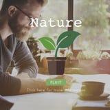 Концепция экологической консервации экологичности природы естественная стоковые изображения