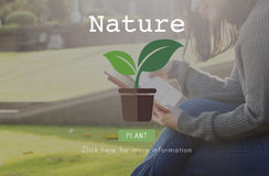 Концепция экологической консервации экологичности природы естественная стоковые фото