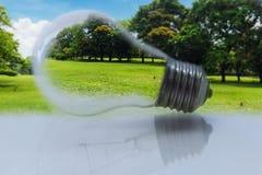 Концепция, электрическая лампочка с зеленой травой и дерево Стоковое фото RF