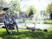 Концепция людей образа жизни: пары велосипеда на зеленой траве в лете паркуют на фонтане Стоковое Изображение RF