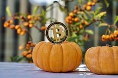 Концепция bitcoin хеллоуина стоковые изображения