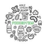Концепция ciircle медицины еды бактерий Probiotics установленная иллюстрация вектора