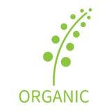 Концепция eco завода органическая Стоковые Изображения