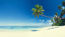 Концепция Seascape рая пляжа лета тропическая стоковое фото