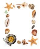 Концепция Seashell и моря на белизне стоковые изображения