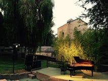 Концерт рояля Emocional Стоковая Фотография