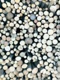 Концы дерева для предпосылки стоковая фотография