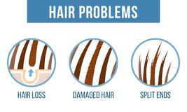 Концы разделения ухода за волосами бесплатная иллюстрация