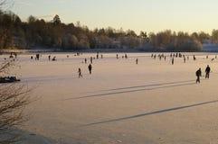 конькобежцы льда Стоковая Фотография