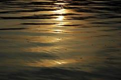 конькобежцы пруда Стоковое Изображение RF