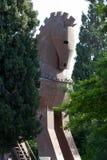 Конь расположенный в Трое Стоковое Фото