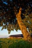 конюшня коровы сельской местности Стоковые Фотографии RF