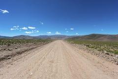 Кондор, Quebrada de Humahuaca, Jujuy, Аргентина Стоковые Изображения RF