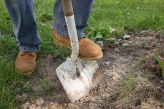Копать грязь Стоковая Фотография RF