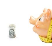 Копилка и лента около долларов, концепция измерения для дела и сохраняют деньги Стоковые Фото