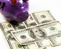 Копилка с долларами - изображение запаса Стоковые Фото