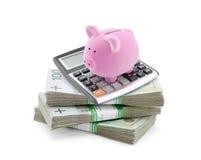 Копилка с польскими деньгами и калькулятором Стоковая Фотография