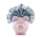 Копилка с польскими деньгами Стоковая Фотография