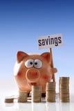 Копилка с vert афиши сбережений и предпосылки монеток голубым Стоковая Фотография RF