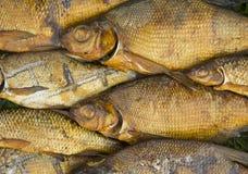 Копченая предпосылка рыб Стоковое Изображение RF