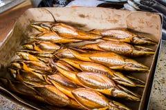 Копченые рыбы в различных размерах кладя на таблицу Стоковая Фотография