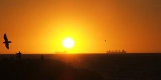 корабли горизонта Стоковые Фото