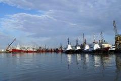 корабли порта Стоковые Фото