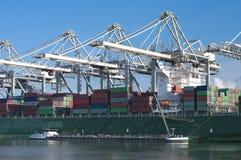 Корабль контейнера в гавани Стоковая Фотография RF