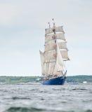 корабль concordia высокорослый стоковые фото