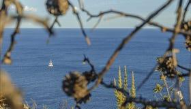 корабль ветрил Стоковое Фото