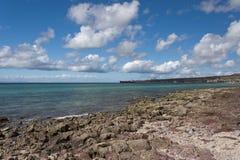 Корабль топливозаправщика в море гавани Стоковая Фотография RF