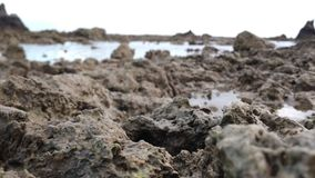 Коралловые рифы стоковое изображение