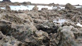 Коралловые рифы стоковые фото