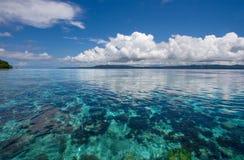 коралловый риф подводный Стоковое Изображение RF