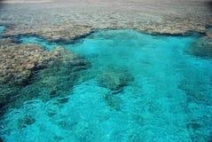 коралловый риф Стоковое Изображение