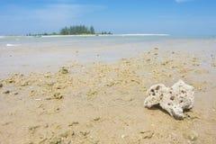 Коралл и рыбацкая лодка на seascape пляжа и голубом небе Стоковое Изображение RF