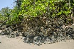 Коралловые рифы Стоковые Фотографии RF