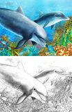 Коралловый риф шаржа с дельфинами - с страницей расцветки Стоковая Фотография RF