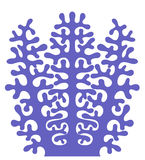 коралл Стоковое Фото