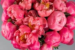 коралл Sharm ранга пионов красивый коралл смешивания и розовый букет цветка в круглой коробке с крышкой Стоковая Фотография