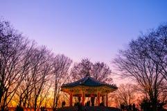 Кореец Pavillion - башня n Стоковое Изображение RF